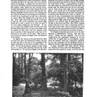 WW_1888-5.jpg